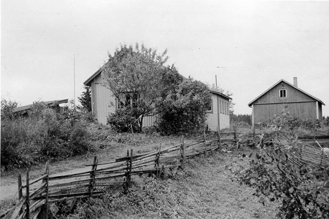 Roine, Antti. Koskela
