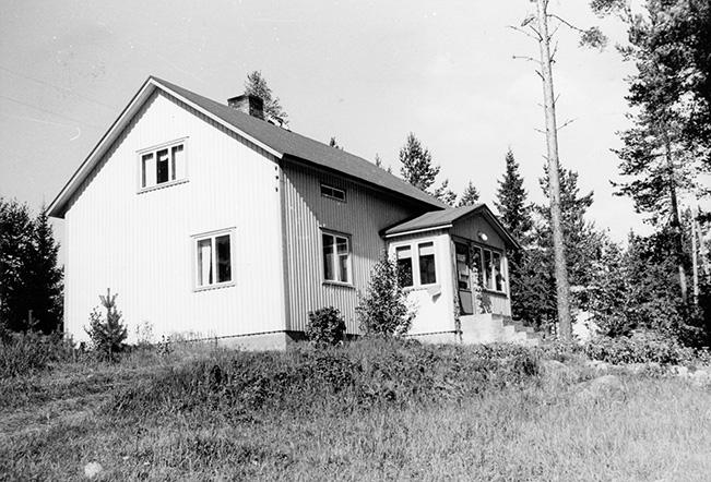 Salomäki, Elisa. Mäntylä