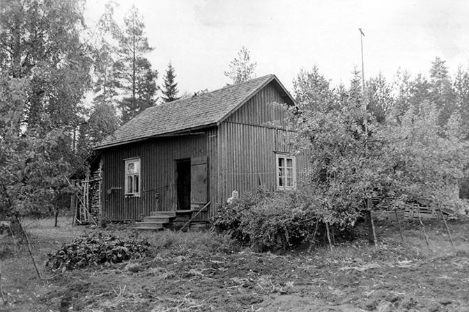 Numminen, Adam. Hongisto Etola.