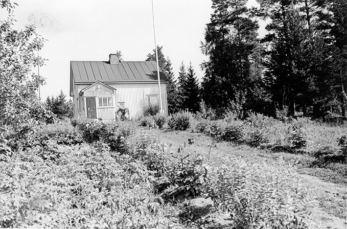 Lintula, Hilma. Vasaramäki Koskenkylä.