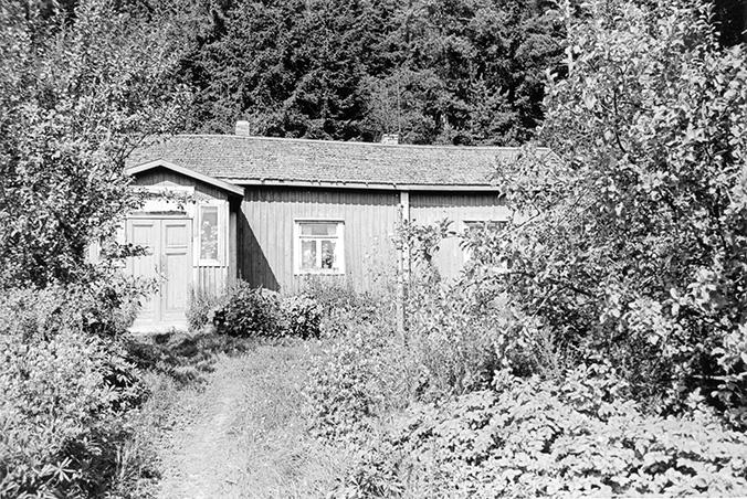Olin, Hilja. Metsärinne Koskenkylä.