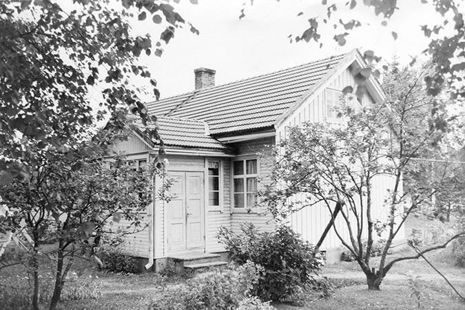 Petäjäniemi, Paavo. Salomaa Koskenkylä.