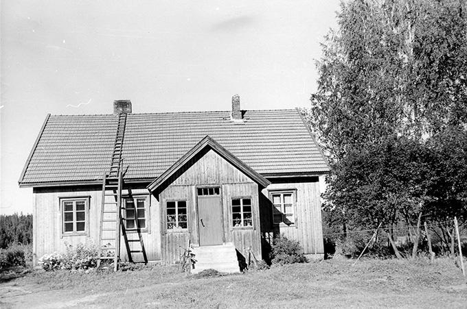 Mattila, Arvi. Yli-Tirisevä Hyväneula.