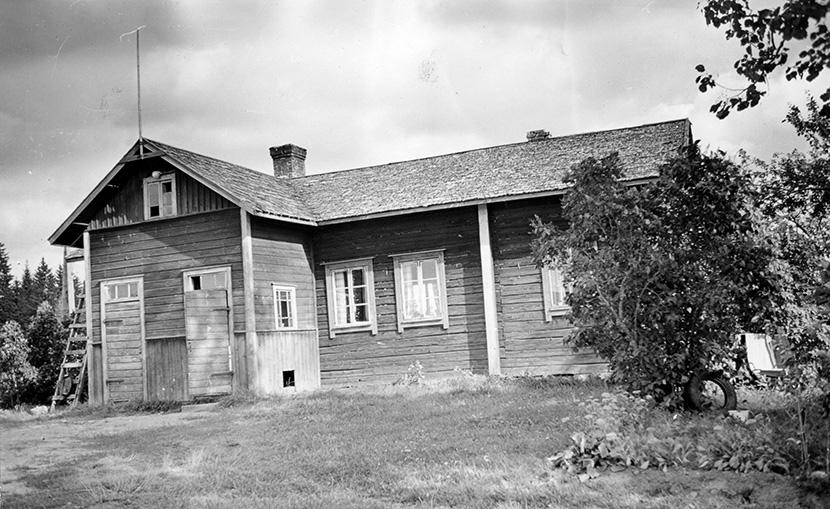 Ruuhimäki, Veikko. Suomensyrjä Hyväneula.