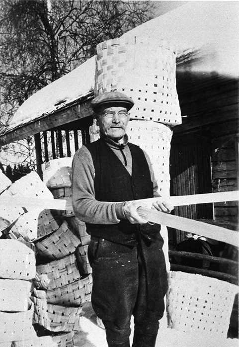 Alfred Tainio