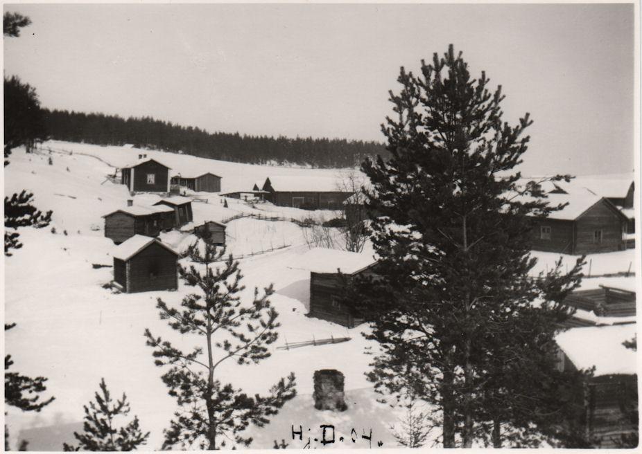Palomaan kylä 1904