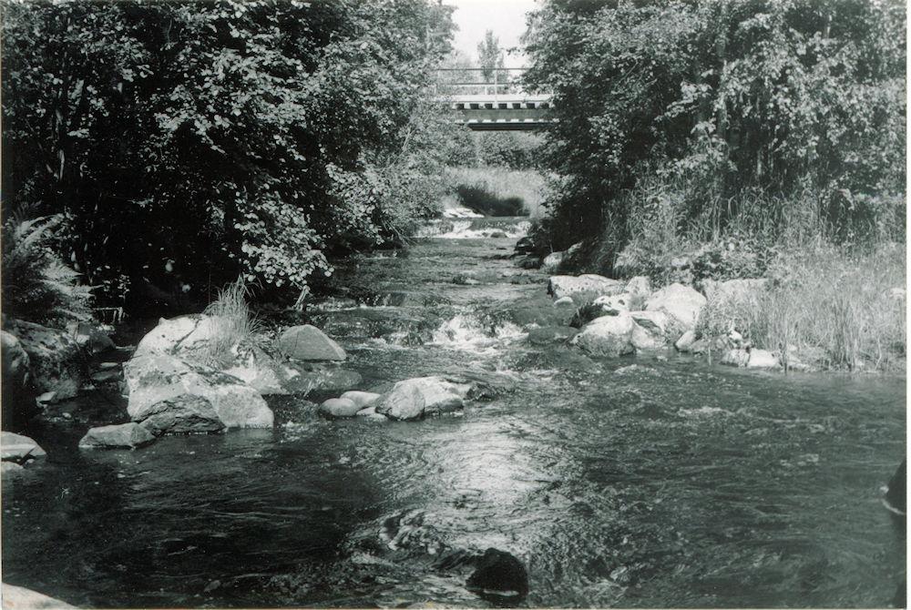 Putulan myllyn sijaintipaikka kuvattuna v. 1988