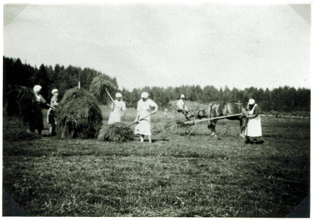 Putulan Tuloiselan heinäväkeä sota-aikana