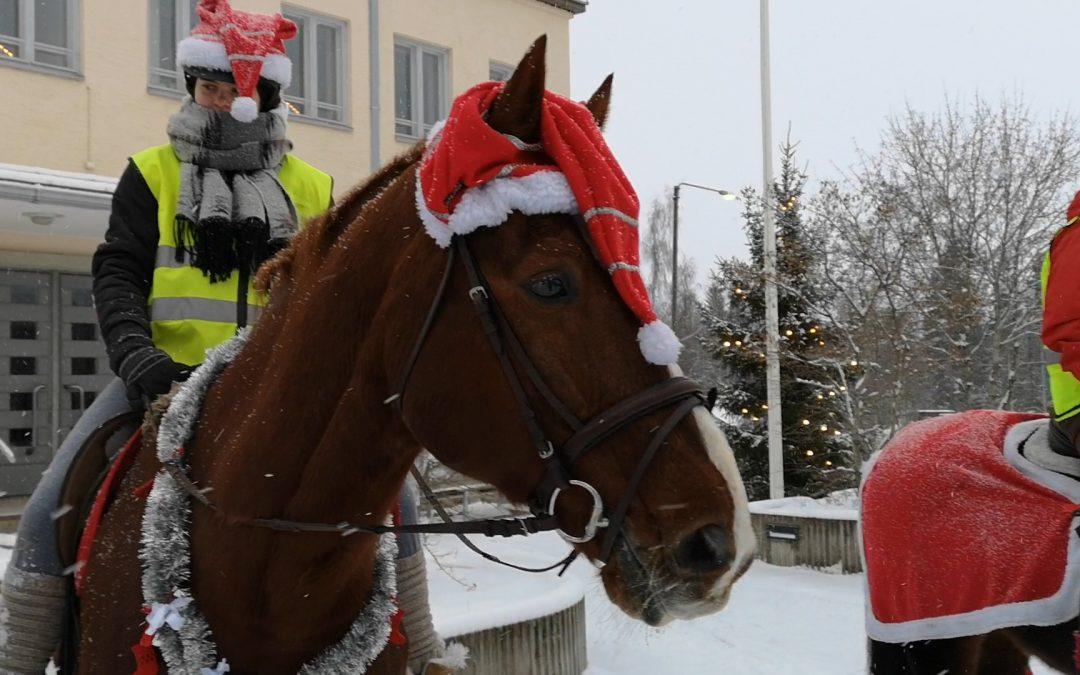 Hämeenkosken Ratsastajien joulutempaus 22.12.2018