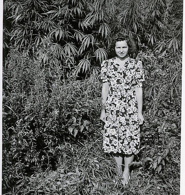 Liisa Tulonen, taustalla kasvaa köyden raaka-ainetta, hamppua