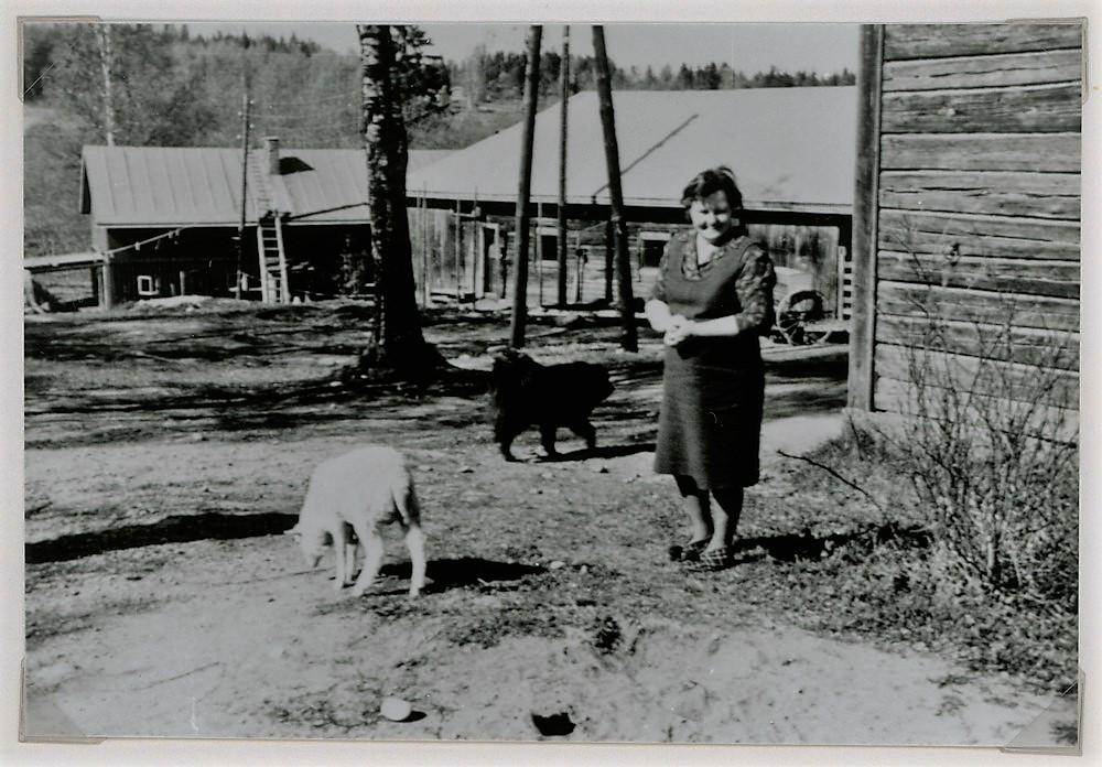 Emäntä Hilkka Toivonen o.s. Tupasela, Rekku-koira ja Sanna-lammas