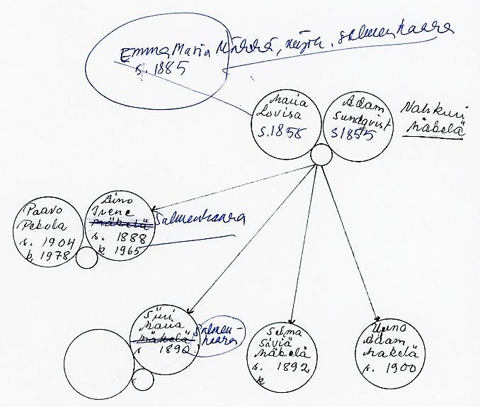 Sukutaulu Mäkelä / Salmenhaara (piirros)