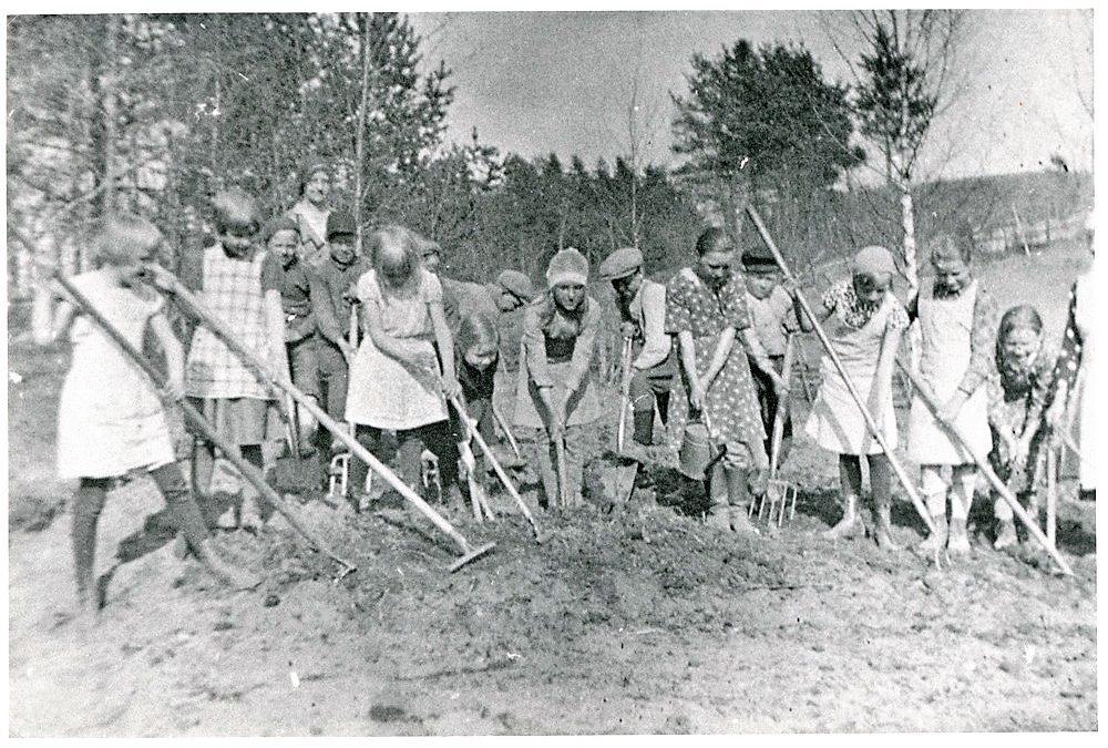 Putulan kansakoulun opettaja Tyyne Vuorento ja oppilaat kasvimaan kevättöissä