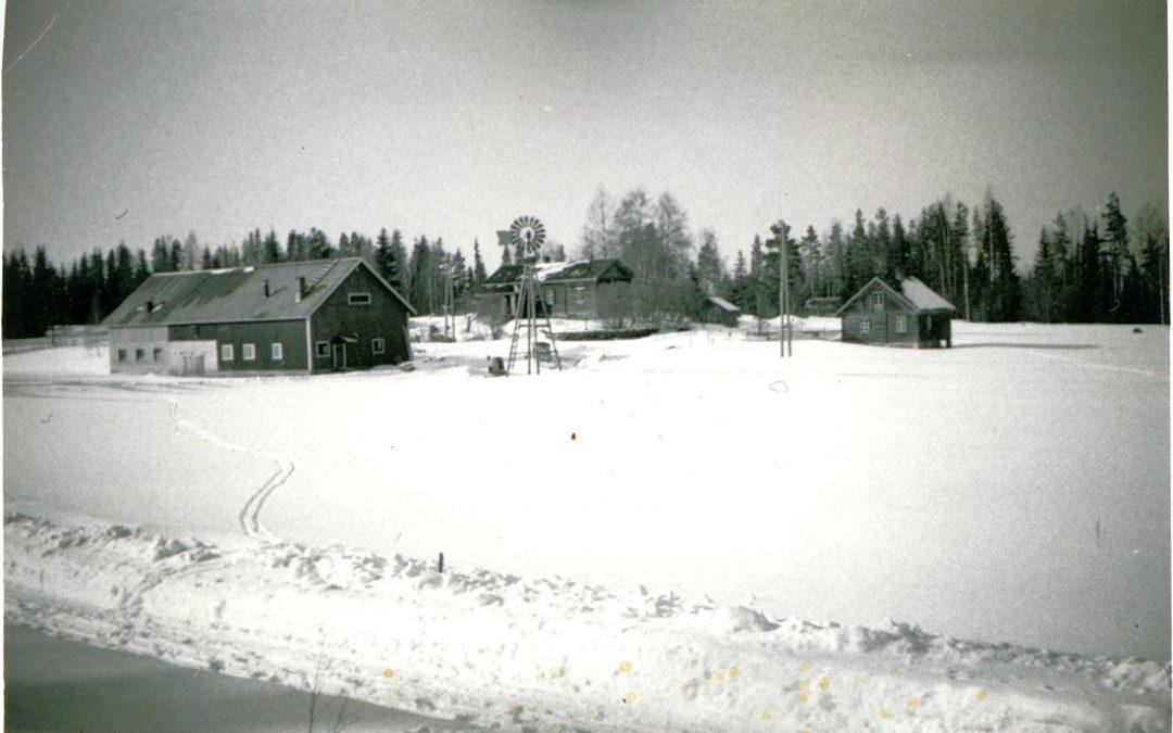 Kankaanpään talo Palomaassa