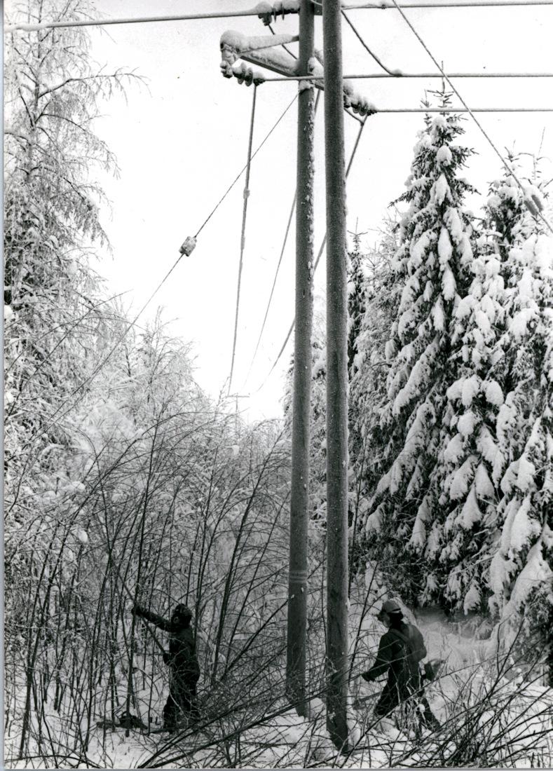 Sähkölinjan puuston raivausta talvella